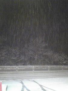 02-1雪すげえええ!!.jpg